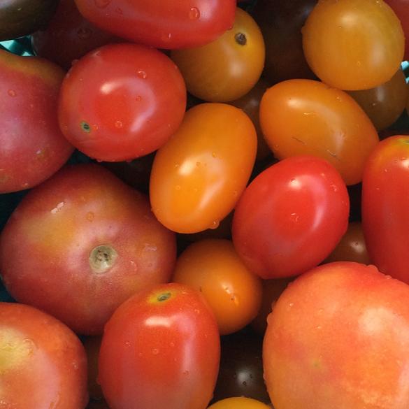 homemade tomatensaus